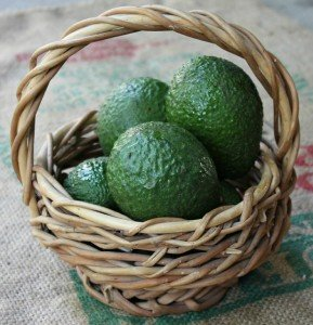 avocado basket