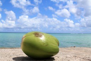 coconut water is full of nutrition