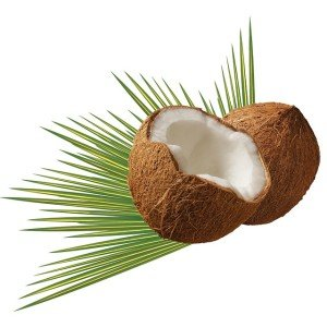 coconut oil and nutrition