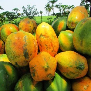papaya health benefits