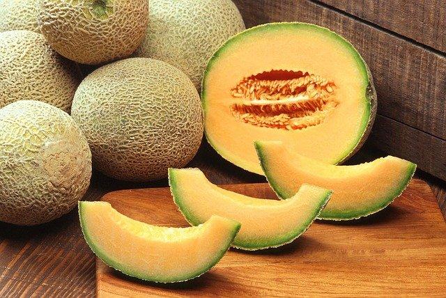 cantaloupe nutritious