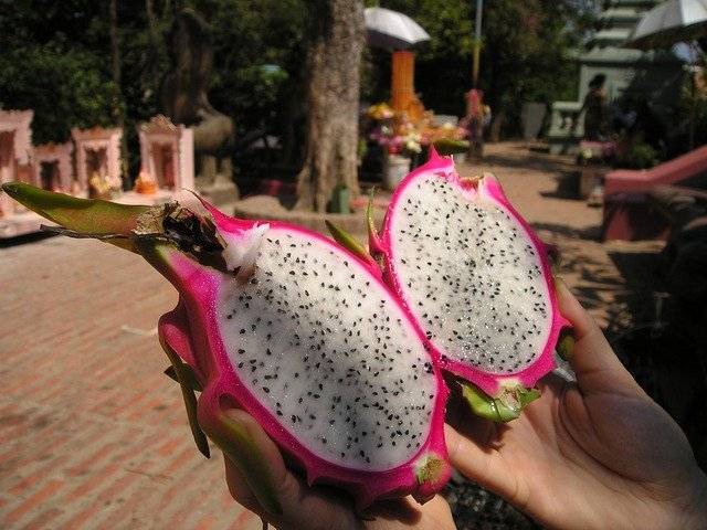 dragon-fruit-