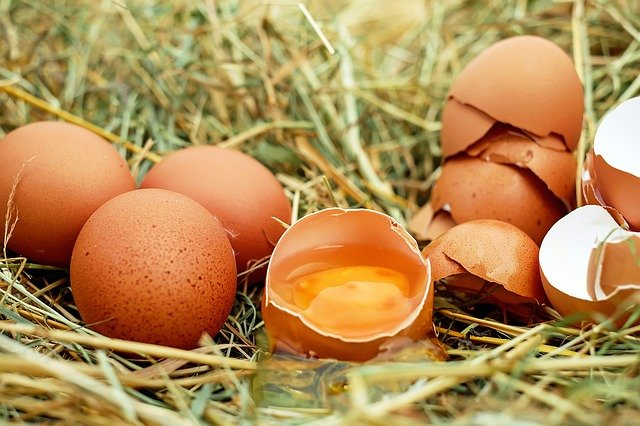 eggs raw