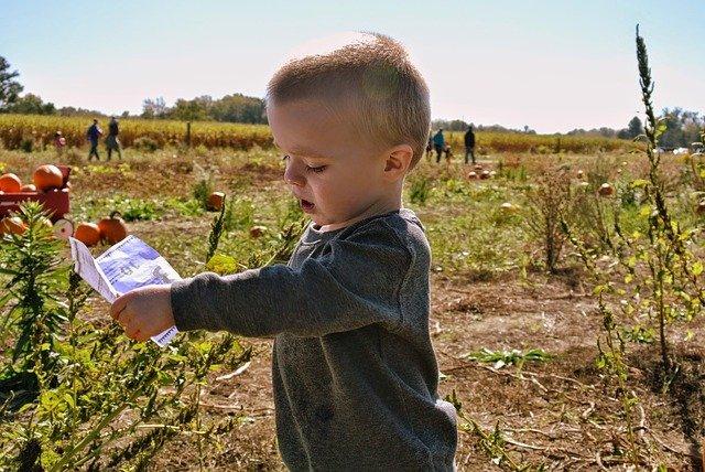 child farm