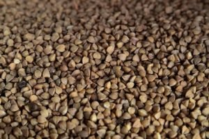 buckwheat close up
