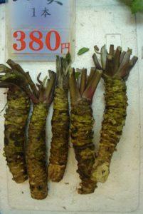 wasabi japanese market
