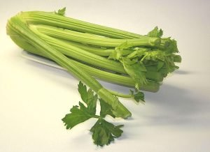 celery bunch used for juicing